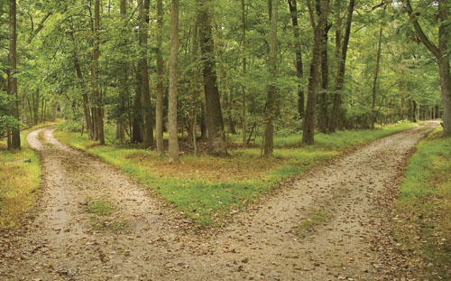 two-roads-two-choices