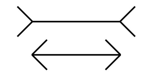 Muller-Lyer Illusion: the lines are of equal length