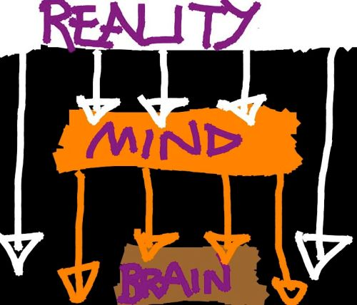 Reality Model