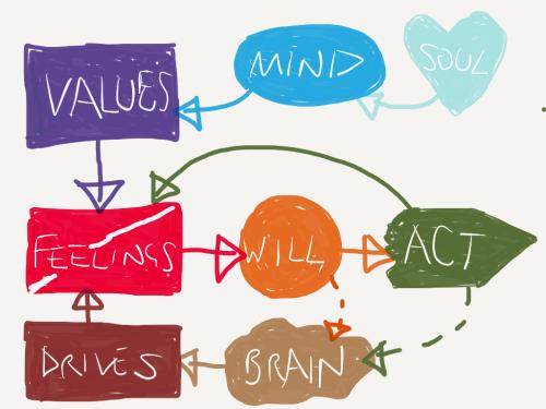 Mind Diagram v2