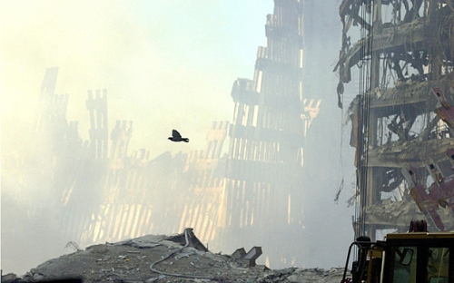 First cause? The aftermath of the attacks of September 11 2001
