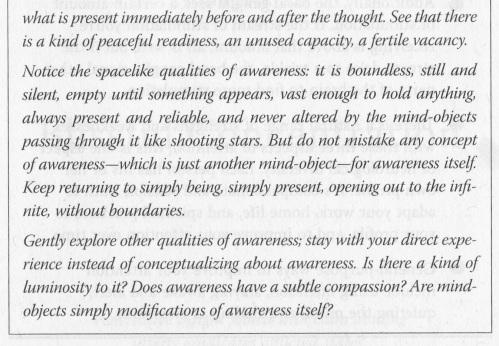 Buddha Meds 02