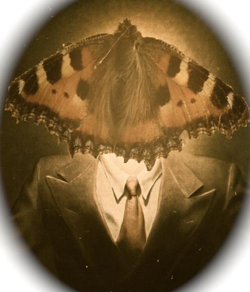 Butterfly Magritte v2
