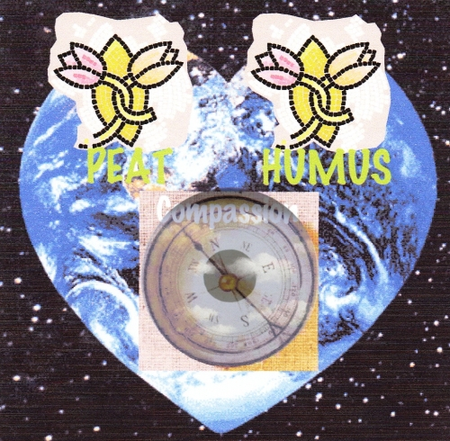 Mindful Eye Earth Heart