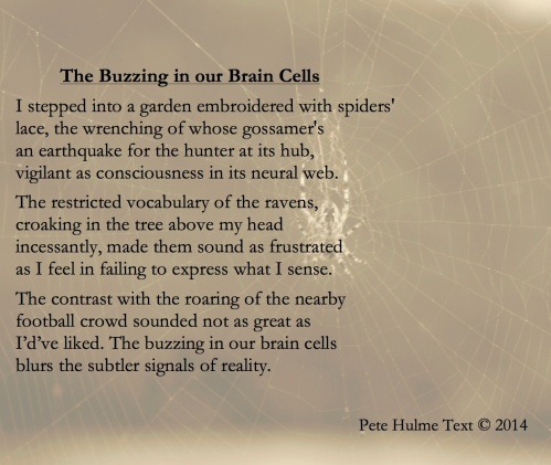 The Buzzing in our Brain Cells v5