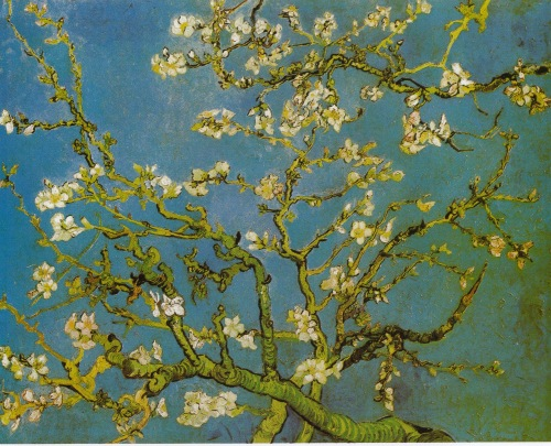 Blossoming Almond Tree VG 1890