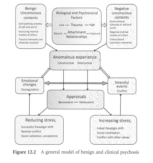 model-of-psychosis