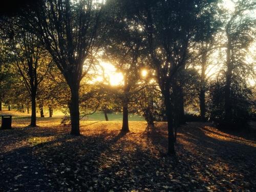 churchill-gardens